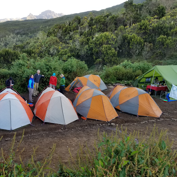 https://gmexpeditions.com/wp-content/uploads/2019/07/kilimanjaro-7days.jpg